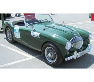 Komplettausstattung für Austin Healey 100 BN1 1952-1955