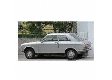 Peugeot 204 coupé from 1966-1970 (only LHD)
